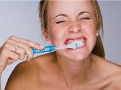 Điều gì xảy ra khi bạn chỉ đánh răng 1 lần trong ngày?