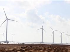 Khánh thành nhà máy điện gió Bạc Liêu giai đoạn 2