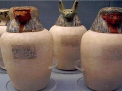 Tìm hiểu hầm mộ chứa hơn 50 xác ướp hoàng tộc Ai Cập