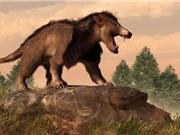 """Điểm danh những loài động vật """"kỳ dị"""" từng thống trị Trái Đất"""
