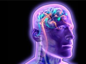 Hệ thống máy tính giúp đọc suy nghĩ con người bằng điện não