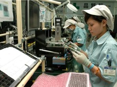 Hải Phòng chú trọng phát triển doanh nghiệp khoa học công nghệ