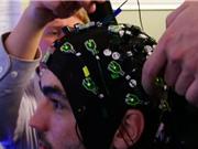 Tải trực tiếp tri thức vào não người: Đã có cơ sở khoa học thực nghiệm