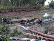 Đối phó với tình trạng khô hạn bằng mô hình tưới ngập khô