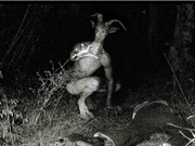 10 loại quái vật đáng sợ nhất trên thế giới