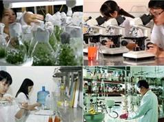 Nghiên cứu khoa học công nghệ được ưu tiên sử dụng vốn ODA