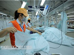"""Dệt - may Việt Nam """"mang thai hộ"""" không chỉ vì nghèo?"""