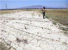 Nghiên cứu tác động của thủy điện trên sông Mekong còn phiến diện