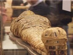 Sự thực về lời nguyền xác ướp Ai Cập