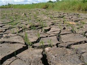 Thái Lan làm mưa nhân tạo chống hạn hán