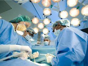 Đầu tư Trung tâm nghiên cứu và phát triển kỹ thuật ghép mô