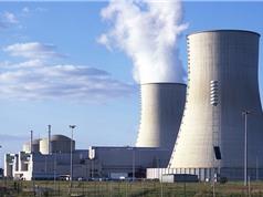Sau năm 2020, điện hạt nhân phủ rộng chưa từng có
