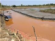 Nhiều nông dân trúng bạc tỷ nhờ hạn - mặn