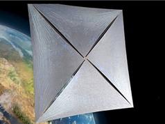 Ông hoàng vật lý và tỷ phú Nga bắt tay phát triển tàu vũ trụ siêu nhỏ
