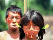 Người dân Nam Mỹ khốn đốn vì thủy ngân