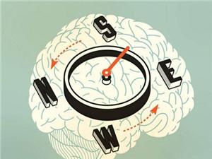 GPS khiến não biến đổi