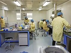 Trung Quốc bùng nổ nhà khoa học triệu đô