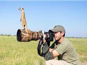 """Những khoảnh khắc """"khó đỡ"""" của động vật trước ống kính máy ảnh"""