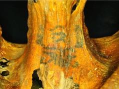 Xác ướp Ai Cập phủ đầy hình xăm thần bí gây xôn xao