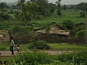 Giải mã bí mật làng tự tử ở Ấn Độ