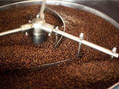 Đặt hàng chế tạo thiết bị chế biến và sấy cà phê ướt quy mô nông hộ