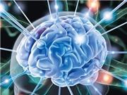 8 thói quen ảnh hưởng đến sức khỏe trí não