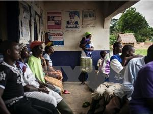 WHO cảnh báo sự xuất hiện các loại dịch bệnh lây lan và thảm họa