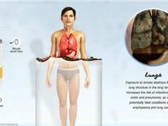Cơ thể thay đổi thế nào khi bạn ngưng hút thuốc