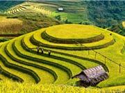Việt Nam lung linh kỳ ảo qua ống kính của nhiếp ảnh gia nước ngoài