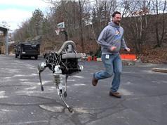 Clip robot 4 chân có khả năng vượt mọi địa hình