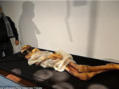 Triển lãm xác ướp công chúa 2.500 năm tuổi mang hình xăm bí ẩn