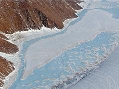 Nhiệt độ Trái Đất không phải thủ phạm khiến băng vùng cực tan nhanh