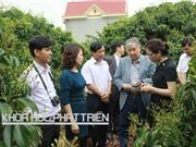 Nông sản Bắc Giang  nâng đẳng cấp nhờ KH&CN