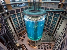 Những công trình thang máy ngoạn mục nhất thế giới