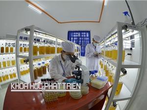 Quỹ phát triển khoa học và công nghệ: Lập đã ngại, chi còn khó hơn