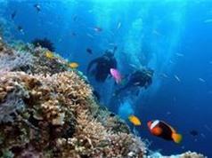 Việt - Mỹ hợp tác  nghiên cứu khoa học biển