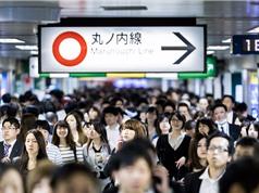 Người Nhật cao quá nhanh, tàu - xe không lớn kịp
