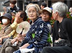Nhật Bản: Bỉm cho người già nhiều hơn bỉm cho trẻ con