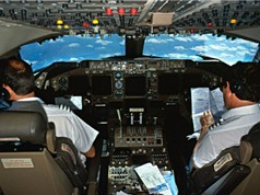 Đào tạo phi công tại Việt Nam từ 2017; hạt thì là có khả năng chống ung thư