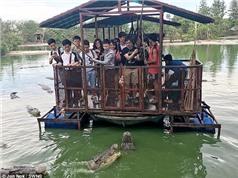 Sợ hãi cảnh khách du lịch cho cá sấu đói ăn thịt