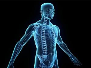 10 quan niệm sai lầm phổ biến về cơ thể người