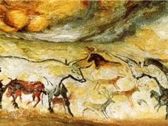 10 bức tranh hang động thời tiền sử nổi tiếng nhất thế giới