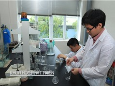 Đào tạo nhân lực khoa học và công nghệ ở nước ngoài: Chọn bước đi ngắn, có trọng tâm