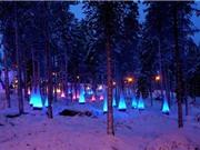 10 địa điểm du lịch lý tưởng nhất Phần Lan