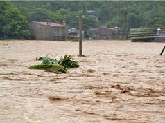 Sau bão, Bắc Bộ và Thanh Hóa đối mặt với lũ