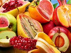 Cây trồng biến đổi gene không gây hại đến sức khỏe của con người