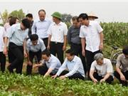 Phó Thủ tướng Vũ Đức Đam:  Bắc Ninh nên nhân mô hình nông sản sạch