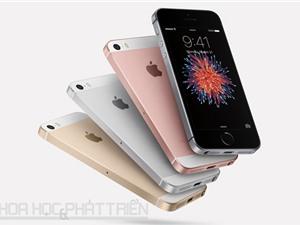 iPhone SE hạ giá 1 triệu đồng