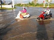 TP Hồ Chí Minh phấn đấu giảm 250.000 tấn CO2 mỗi năm