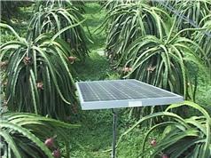 Ninh Thuận: Mô hình tưới nước bằng năng lượng mặt trời